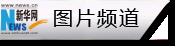 旅游(you) 生態